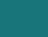 ECO bleu canard 160x125