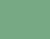 ECO olive 160x125